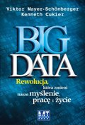 ekonomia, biznes, finanse: Big Data - audiobook