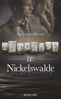 Zbrodnie w Nickelswalde - ebook