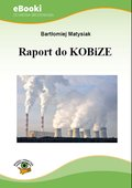 Raport do KOBiZE - ebook