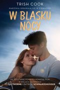 W blasku nocy - ebook