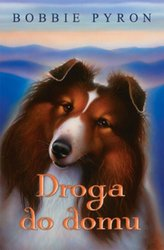 : Droga do domu - ebook